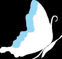 radfly butterfly